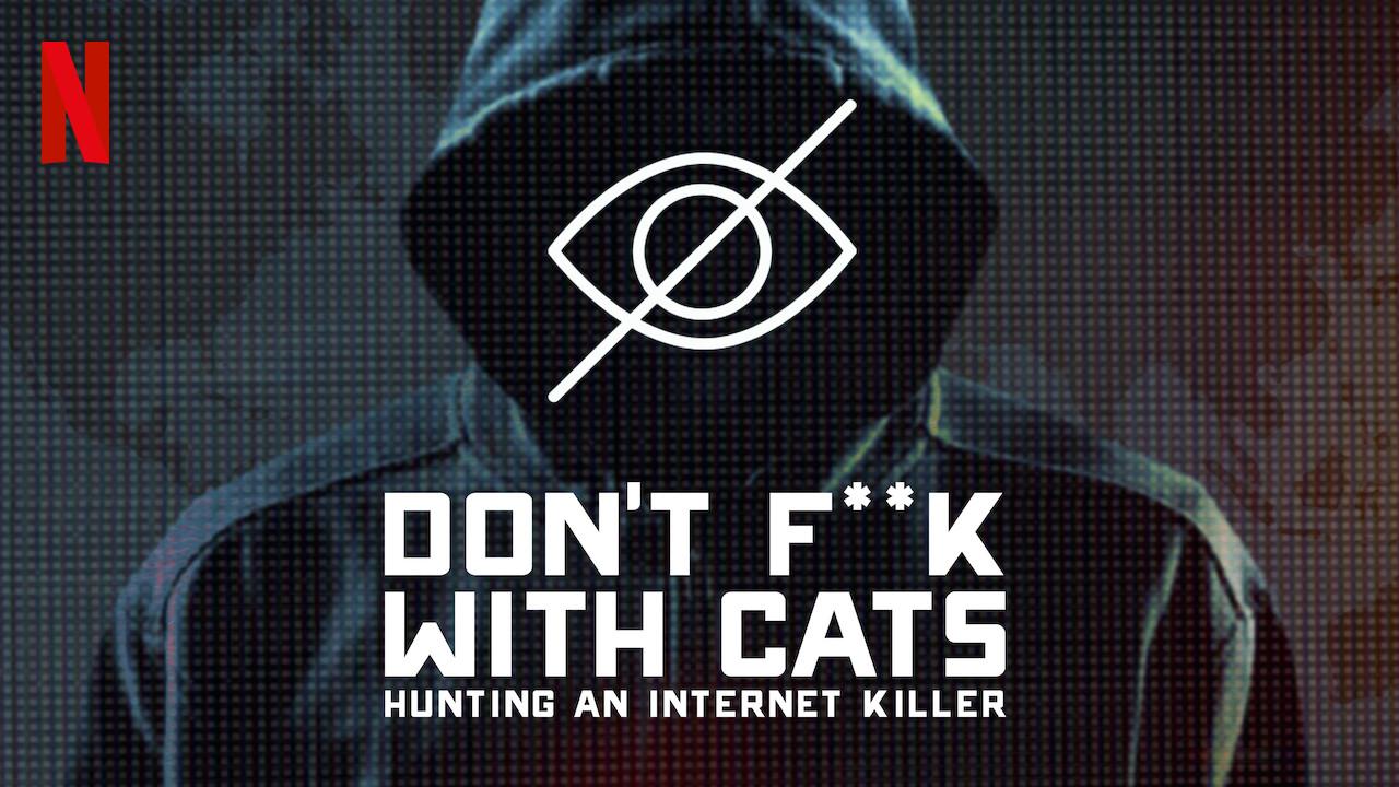 Kedilere Bulaşmayın